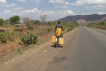Carrying water by cycle is a common sight.,Tanzania