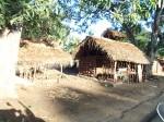 Local houses, Zambia