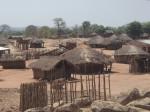 Basic Malawi village.