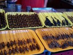 So do you fancy barbecued grasshoppers or scorpions ? Or maybe some caterpillar larvae