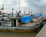 Fishing boats in Belem