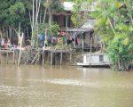 House by Amazon near Belem