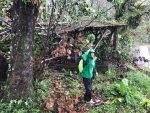 In the rain near volcano Soufriere, Guadeloupe