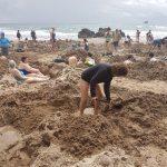 Digging holes for hot water from thermal springs. Coromandel peninsula.