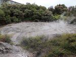 Mud geysers in Te Puja park at Rotorua